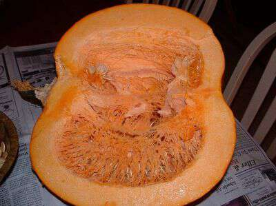 How to freeze pumpkin