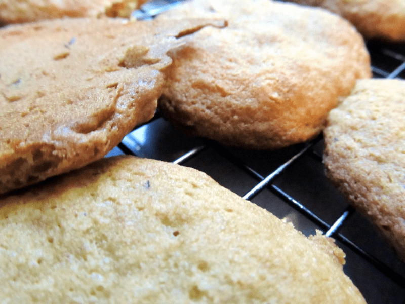Old fashioned blackwalnut cookies