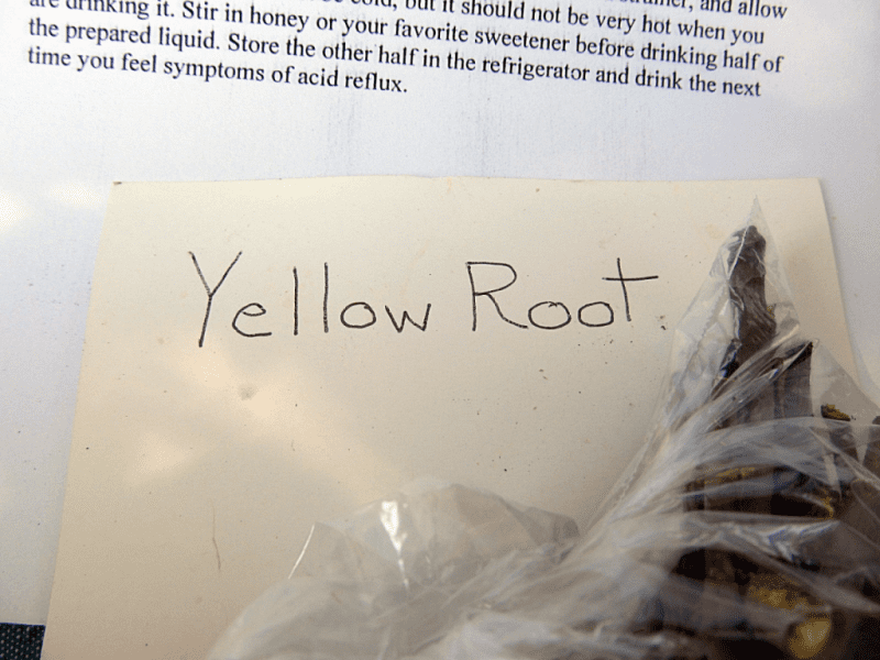 Yellow Root for medicinal purposes