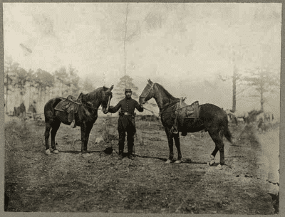 Col. Sharpe's horses, Falmouth, Va., April, 1863