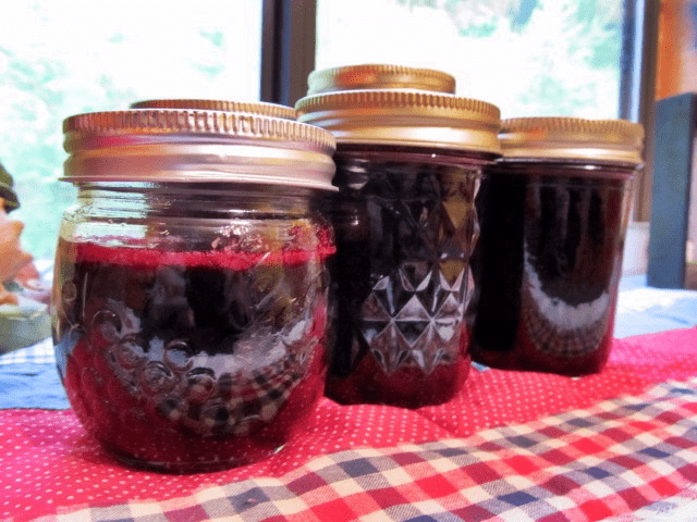 Old time mulberry jelly recipe