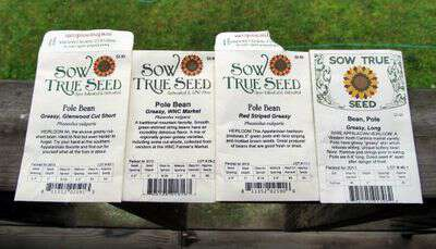 Sow True Seed Green Beans