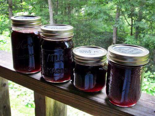 Blackberry jelly from appalachia