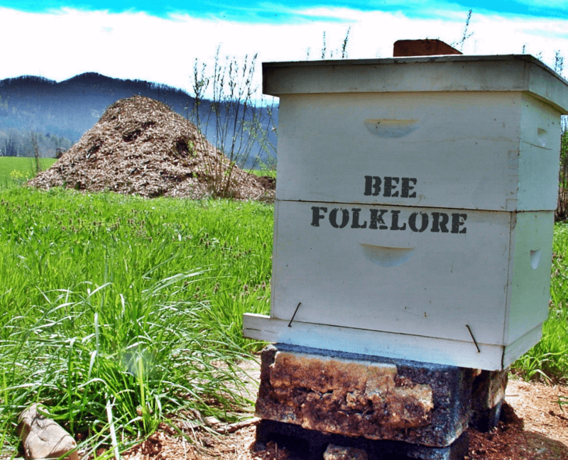 Bee Folklore from Appalachia