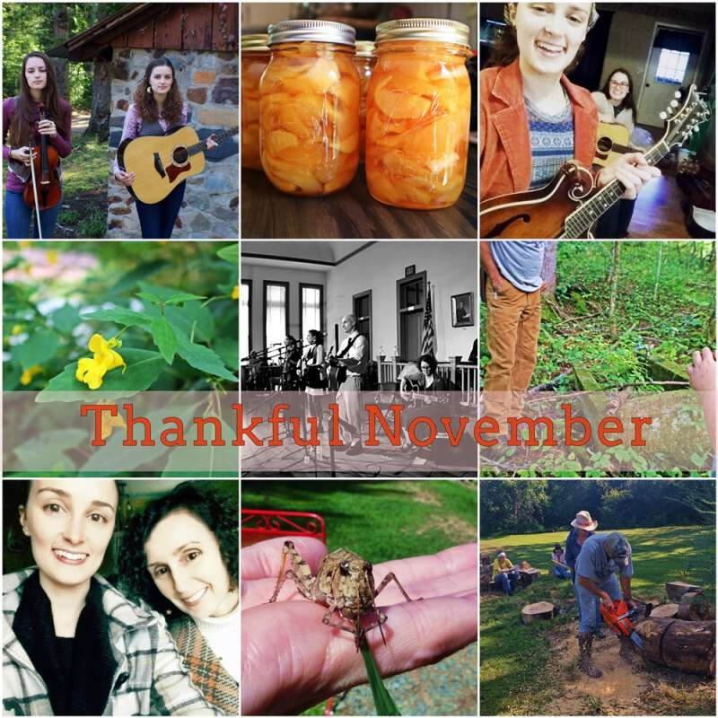 thankful november at Blind Pig and The Acorn