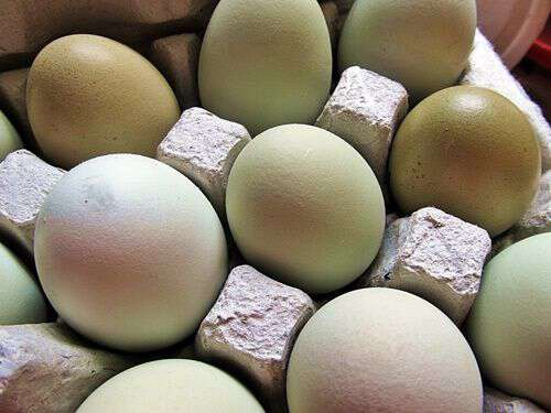 old-fashioned-way-of-dying-eggs