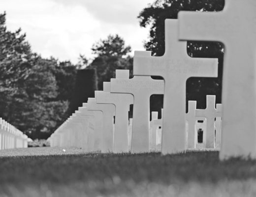 crosses in cemetery