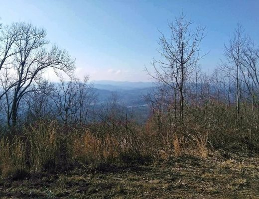 Mountain top view of Brasstown